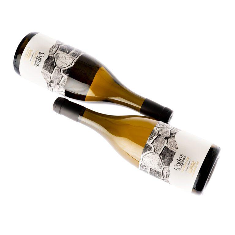 fotografía 2 botellas Costeira Codos de Larouco Godello