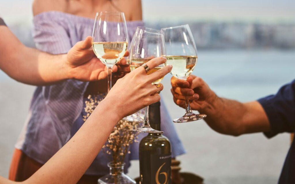 5 mejores vinos