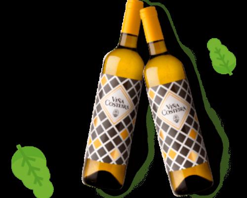 Fotografia 2 botellas